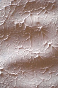 Gesso texture
