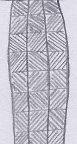 gecko pattern close up
