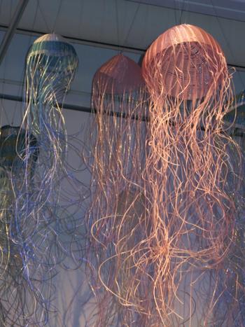 Ghost-nets-1