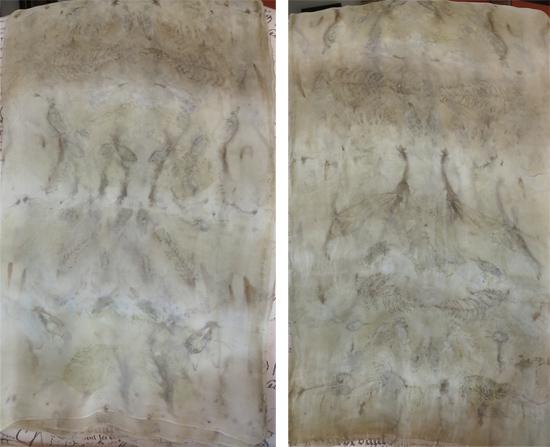 P5-S5-tissue-silk-3