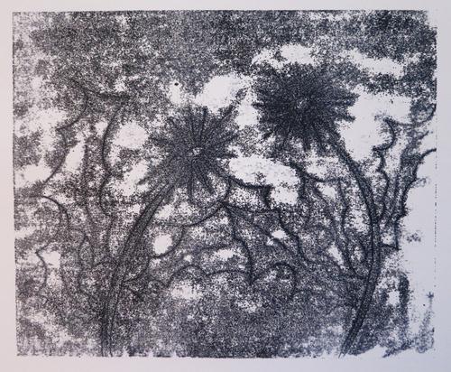 Print1-P3-Backdrawing2