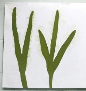 Print1-P3-Texture10