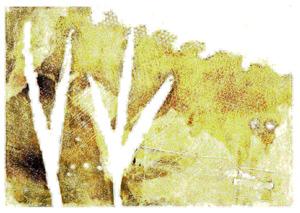 Print1-P3-Texture9
