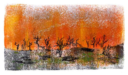 Print1-P4-Bushfires2
