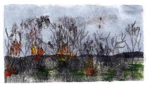 Print1-P4-Bushfires3