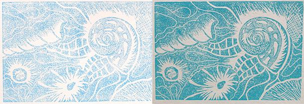 Shell-prints-2
