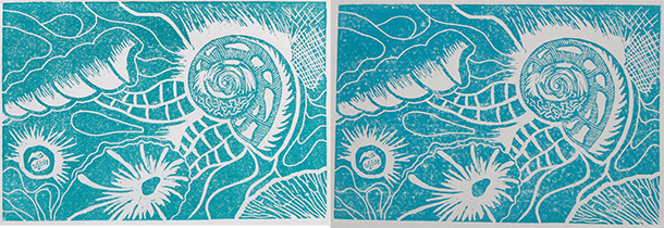 Shell-prints-3