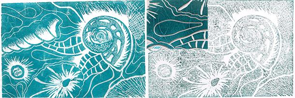 Shell-prints-5