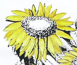 floral-still-life2