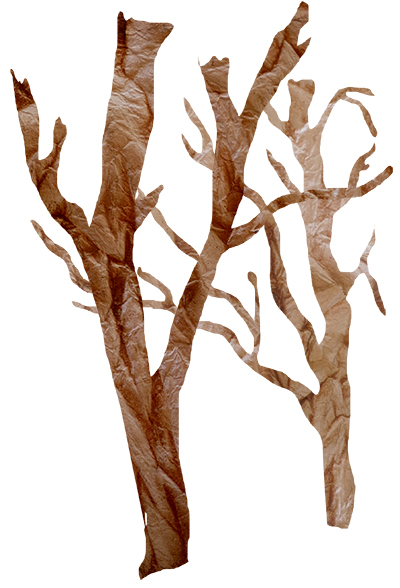 tea-stained-tree-collage